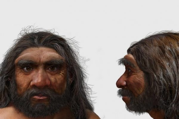 Extinct Human Species That May Replace Neanderthals As Our Closest Relatives
