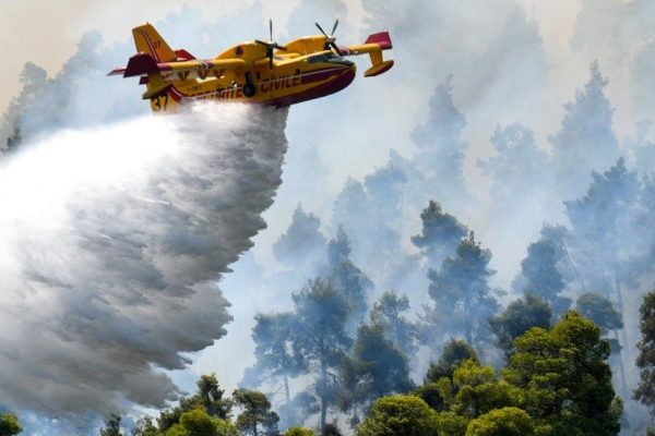 Greece Wildfires: The Worst Ecological Disaster In Decades