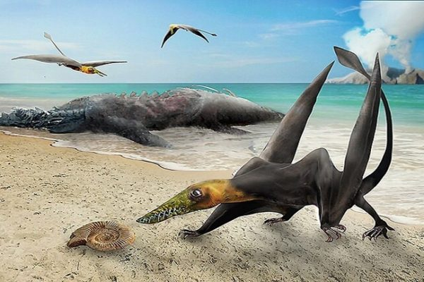Scientists Discovered Fossil of a 'Flying dragon' Roamed the Earth 160 million years ago in Chile
